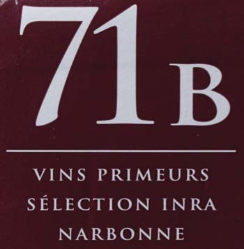 71B-1122 Dry Wine Yeast (8 g)