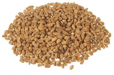 Oak Smoked Wheat 5 lb