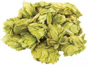 Northern Brewer Whole Hops (2 oz)